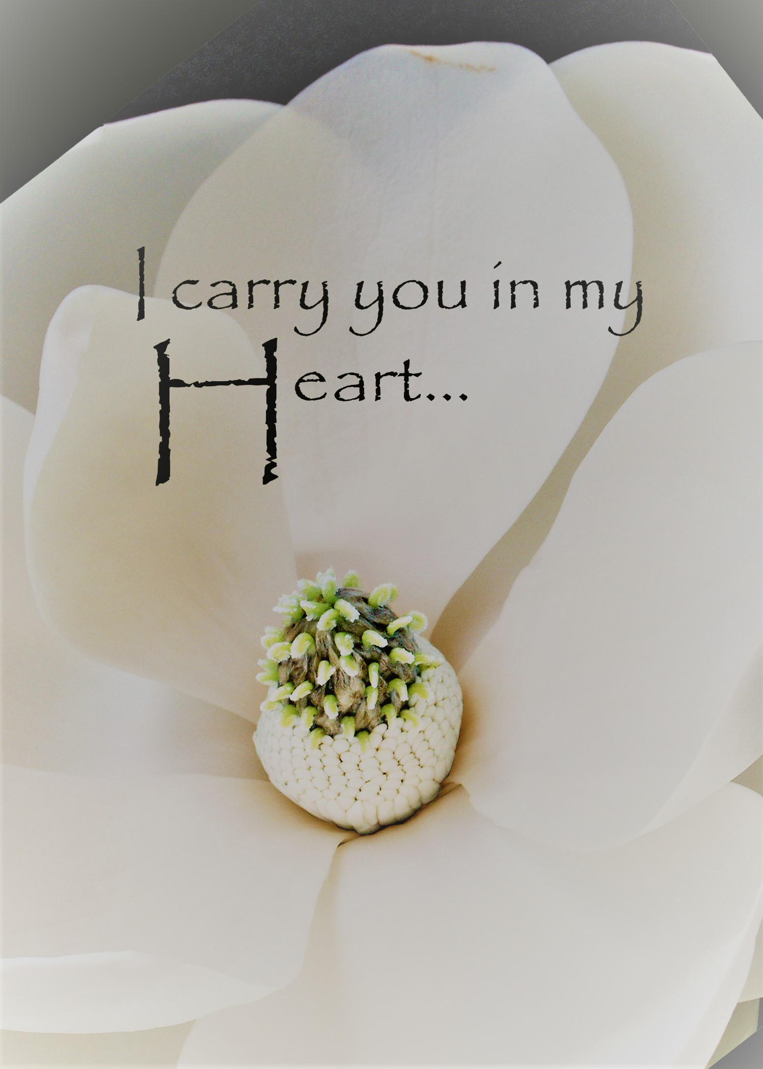 I Carry You in My Heart - Magnolia Print