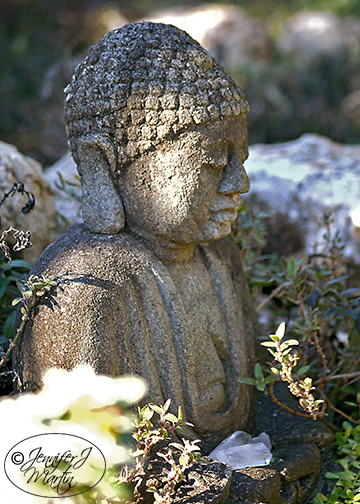 Zen Buddha With Crystals