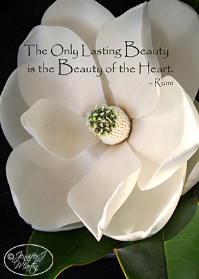 The Only Lasting Beauty (Rumi Quote) - Magnolia Blossom